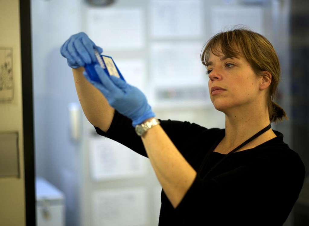 Jodi in DNA Lab About